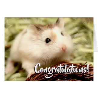Hammyville - de Gelukwensen van de Hamster Kaart