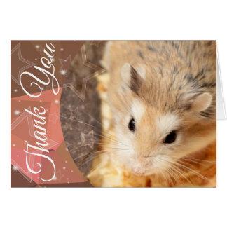 Hammyville - de Leuke Hamster dankt u Briefkaarten 0