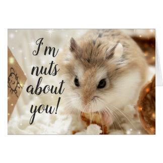 Hammyville - de Noten van de Hamster over u Kaart