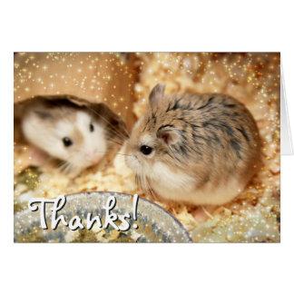 Hammyville - de Vriendschap van de Hamster Kaart