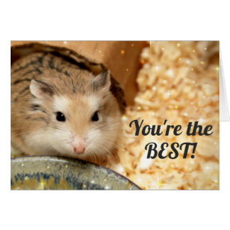 Hammyville - Leuke Bruine Hamster Kaart