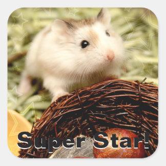 Hammyville - Leuke Hamster Vierkante Sticker