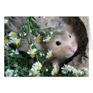 Hamster in bloemen kaart