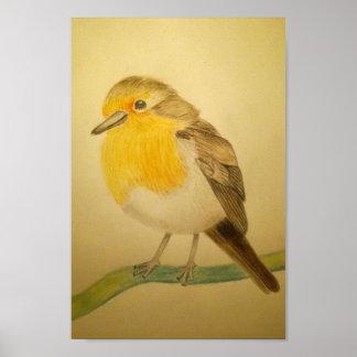 Hand getrokken de vogelposter van Robin Poster