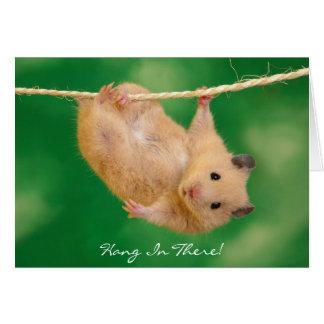 Hang daar in! Hamster Kaart