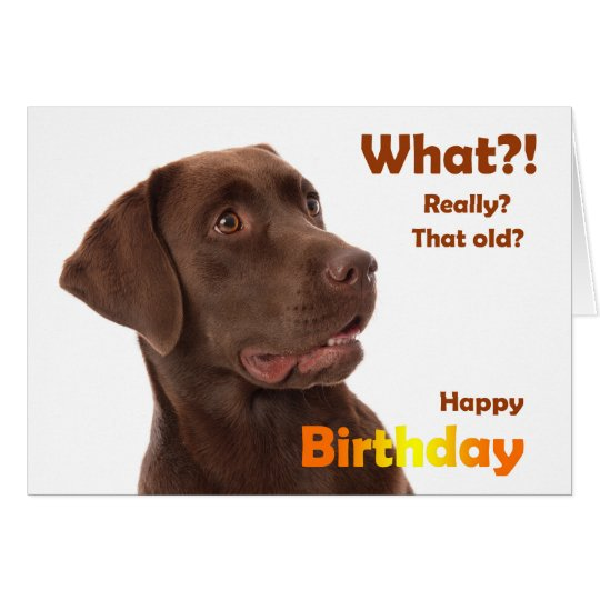 Happy Birthday fun card with Labrador dog Briefkaarten 0