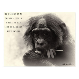 Harmonie met Natuur Briefkaart
