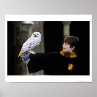 Harry en Hedwig 3 Poster