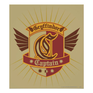 Harry Potter | Gryffindor QUIDDITCH� Kapitein Poster