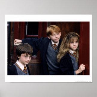 Harry, Ron, en Hermione Poster