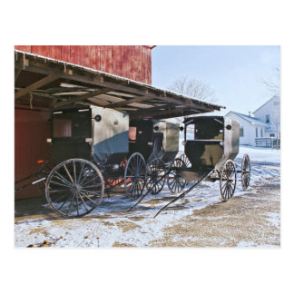 Haven de Met fouten van Amish Briefkaart