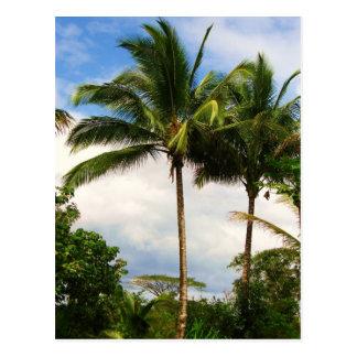 Hawaiiaanse palm briefkaart