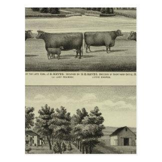 Hayes, Woonplaats Olathe, en Ellis en Boerderij Briefkaart
