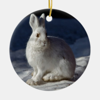Hazen de van Alaska van de Sneeuwschoen Rond Keramisch Ornament