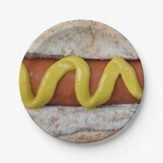 heerlijke hotdog met mosterdfoto papieren bordje