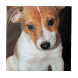 Hefboom Russell Terrier Puppy Dog Tile Keramisch Tegeltje
