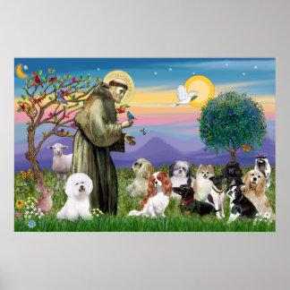 Heilige Francis Blessing Tien Honden Poster
