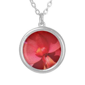 heldere rode bloemblaadjes zilver vergulden ketting