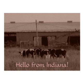 Hello van Indiana! Briefkaart