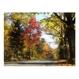 Herfst in Konijnenveld Vermont Briefkaart