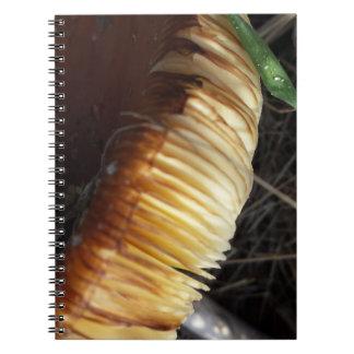 Herfst - Paddenstoel Details Notitieboek