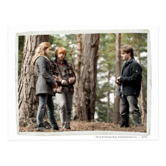 Hermione, Ron, en Harry 2 Briefkaart