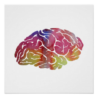 Hersenen Perfect Poster