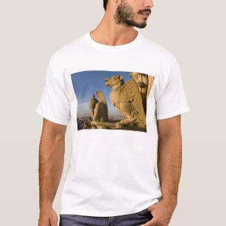 Hersenschim op voorzijde van de Kathedraal van T Shirt