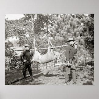 Herten die, 1902 jagen. Vintage Foto Poster