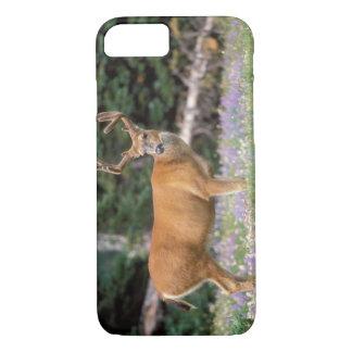 Herten met zwarte staart, bok die wildflowers iPhone 7 hoesje