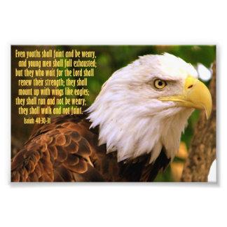 Het 40:30 van Isaiah - 31 met Kaal Eagle Foto Afdruk
