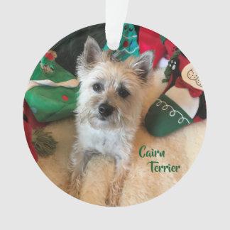 Het AcrylOrnament van Terrier van de steenhoop Ornament