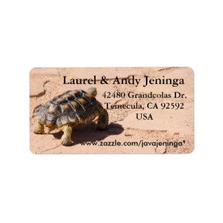 Het Adresetiket van de Schildpad van de woestijn Etiket