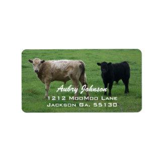 Het Adresetiket van koeien Addressticker