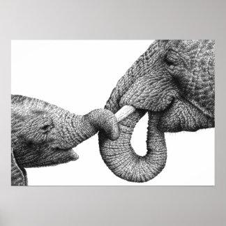 Het Afrikaanse Poster van de Olifant en van het Ka