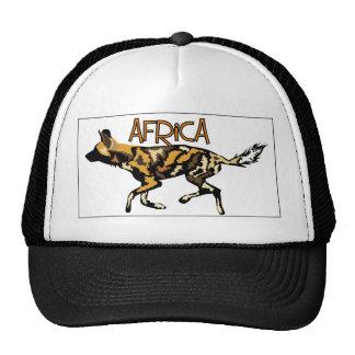 Het Afrikaanse Wilde Pet van de Safari van de Hond
