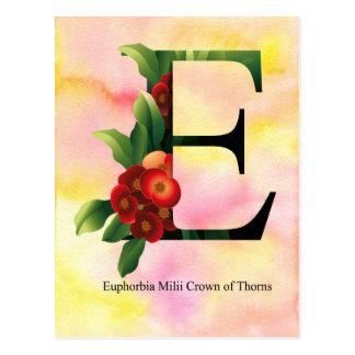 Het Alfabet van bloemen met de Achtergrond van de Briefkaart