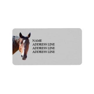 Het Amerikaanse Paard van het Kwart - het Westerne Etiket