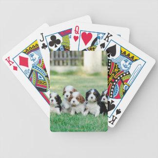 Het arrogante puppy van Charles Spaniel van de Poker Kaarten