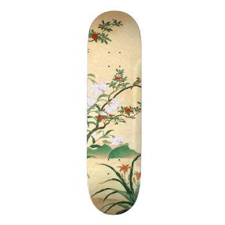 Het Aziatische Rode Skateboard van de Vogel van de