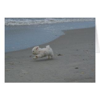 Het Baby van het strand Kaart