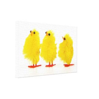 Het babykuikens Verpakt Canvas van Pasen Canvas Prints