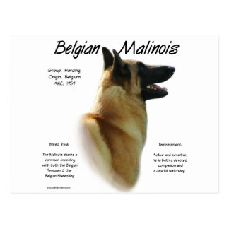 Het Belgische Ontwerp van de Geschiedenis Malinois Briefkaart