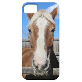 Het Belgische Paard van het Ontwerp Barely There iPhone 5 Hoesje