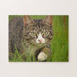 Het Besluipen van de Kat van de gestreepte kat Legpuzzel