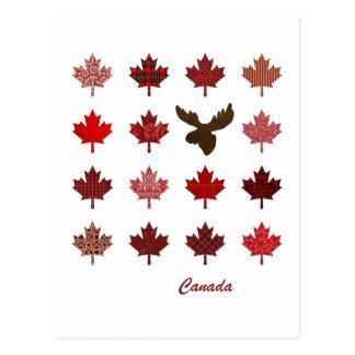 Het Blad van de Esdoorn van Canada en het Briefkaart