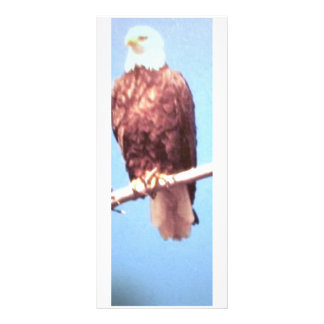 Het Bladwijzer van Eagle/de Kaart van het Rek