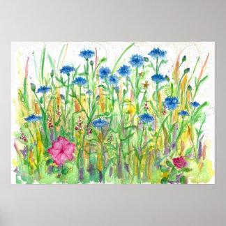 Het blauwe Art. van de Waterverf van de Korenbloem Poster