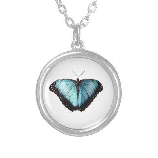 Het blauwe Ketting van de Vlinder van de Zigeuner