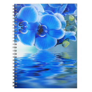 Het blauwe Notitieboekje van Orchideeën Ringband Notitieboek